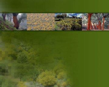 habitantes del bosque. flora - Extremambiente