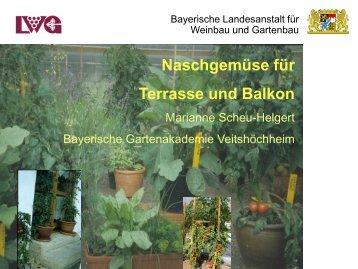 Vortrag Naschgemüse von Marianne Scheu-Helgert