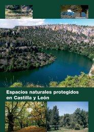 Espacios naturales protegidos en Castilla y León