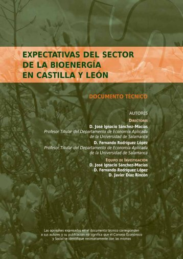 expectativas del sector de la bioenergía en castilla y león - Consejo ...