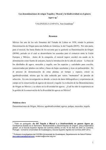 1 Las denominaciones de origen Tequila y Mezcal y la ... - ESAC