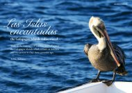 Please click here - Galapagos Classic Cruises