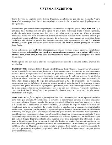 SISTEMA EXCRETOR - Laboratório de Biologia - IFSC