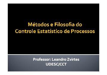 O processo - Udesc