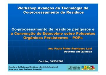 Workshop Avanços da Tecnologia de Co-processamento de ...