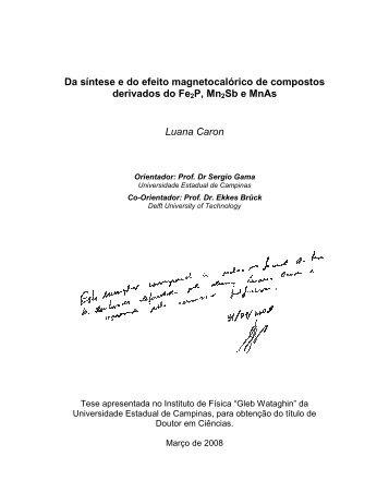 Faça o download da tese completa na versão em PDF - A Biblioteca ...