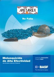 Folleto - BASF Chile