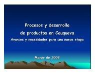 Procesos y desarrollo de productos en Cauqueva. Avances - Cepal