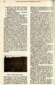 CULTIVO DEL AJO - Banco de Seguros del Estado - Page 4