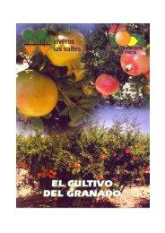 Page 1 Page 2 El cultivo del granado (PÚNICA GRANATUM ...