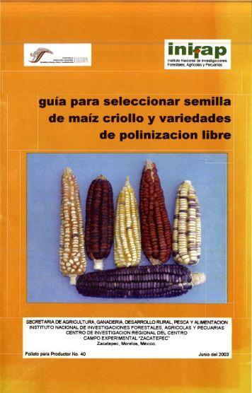 Guía para seleccionar semilla de maíz criollo y variedades ...