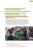 Derechos humanos y Objetivos de Desarrollo del Milenio ... - Page 7