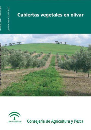 cubiertas vegetales en olivar - Junta de Andalucía