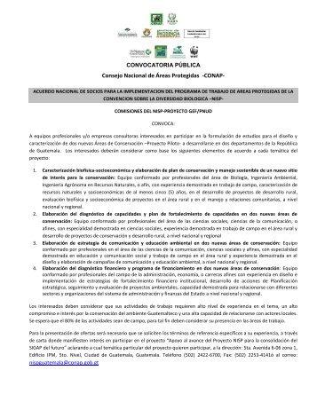 Convocatoria 2017 01 para ocupar plazas de investigaci n 1 for Convocatoria para plazas docentes 2017