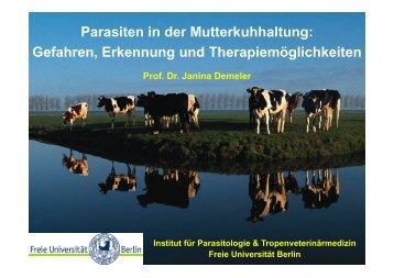 Parasiten in der Mutterkuhhaltung: Gefahren, Erkennung und ...