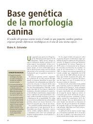 ostrander-2008-genoma-canino