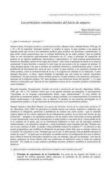 Los principios constitucionales del juicio de amparo.pdf