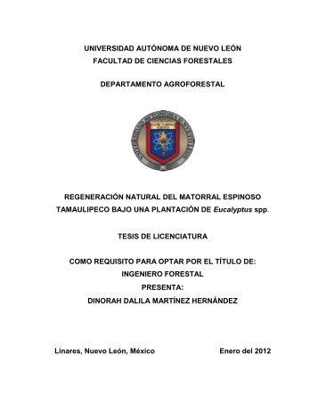Tesis de Licenciatura - Facultad de Ciencias Forestales ...