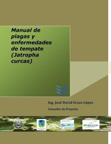 Manual de plagas y enfermedades de tempate (Jatropha ... - centa
