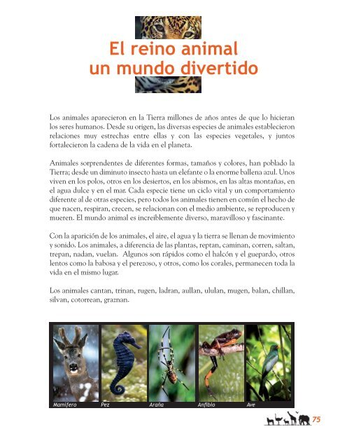 El Reino Animal Un Mundo Divertido Secretos Para Contar