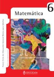 Matemática Nivel VI - Región Educativa 11