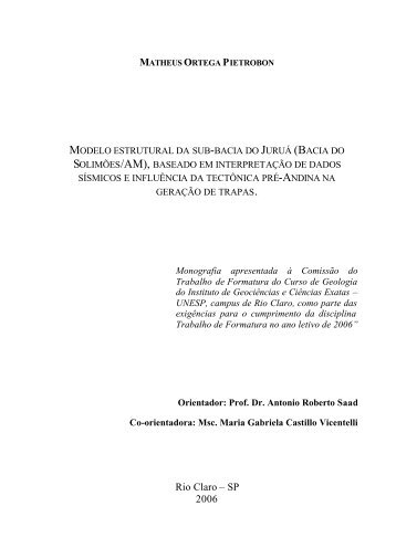 matheus ortega pietrobon - ANP