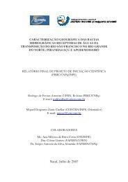 Rodrigo de Freitas Amorim.pdf - mtc-m17:80 - Inpe