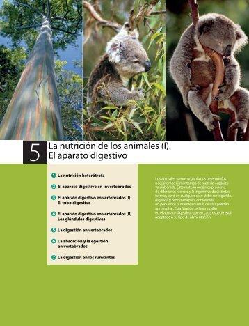 La nutrición de los animales (I). El aparato digestivo - Ames