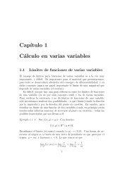 Cap´ıtulo 1 Cálculo en varias variables