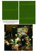Descargar - Asociación Costarricense de Orquideología - Page 7