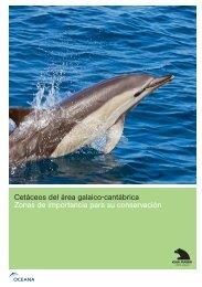 Cetáceos del área galaico-cantábrica Zonas de ... - Oceana