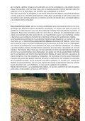 Rutas de Senderismo en pdf. - Cirat - Page 6