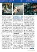 El encendido - Asociación Mutua Motera - Page 2