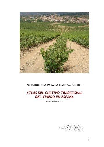 Descargar PDF - Luis Vicente Elías