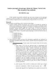Analyse paysagère du paysage viticole de Chinon, Val de Loire ...