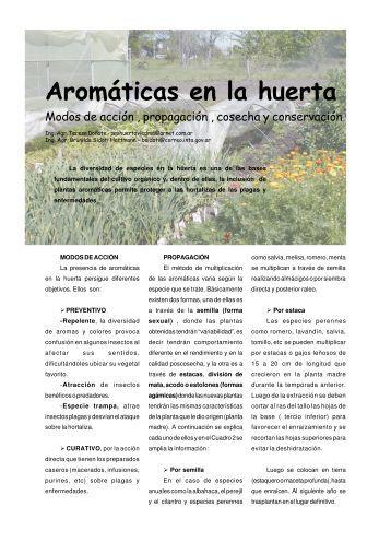 Aromáticas en la huerta.pdf - INTA