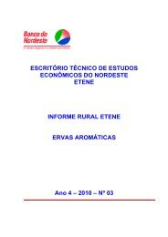 escritório técnico de estudos econômicos do nordeste etene