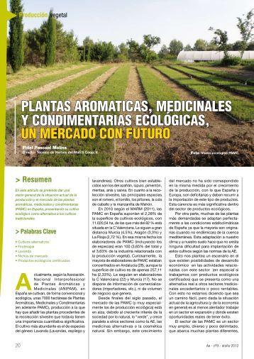 Cultivo de plantas arom ticas medicinales y for Cultivo de plantas aromaticas y especias