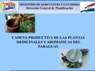 Cadena Productiva de las Plantas Medicinales y Aromáticas del ...