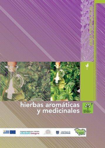 hierbas aromáticas y medicinales - Uruguay Integra
