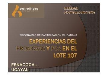 Exposición PROMOSAC y PCA Lote 107