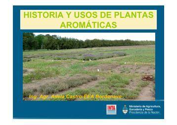 HISTORIA Y USOS DE PLANTAS AROMÁTICAS - INTA