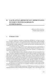 8. LAS PLANTAS AROMÁTICAS Y ... - Caja de Badajoz