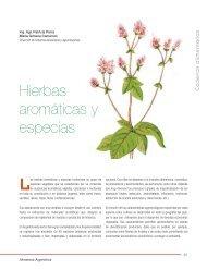 Hierbas aromáticas y especias - Alimentos Argentinos