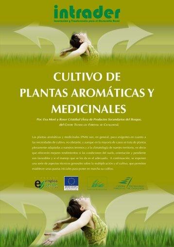 Redalyc conocimiento ind gena del efecto de plantas for Cultivo de plantas aromaticas y especias