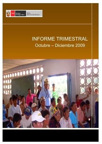 INFORME TRIMESTRAL - Ministerio de Energía y Minas