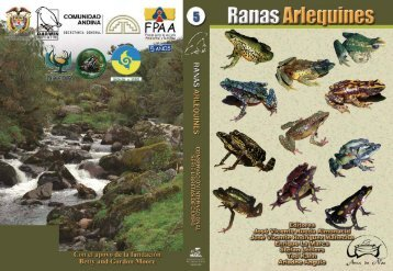Ranas Arlequines - Atelopus.com