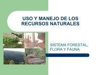 Ing. Roberto Gama - Asesoria forestal sustentable ... - iacatas ac