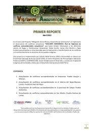 primer reporte - Vigilante Amazónico
