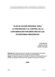 PLAN DE ACCIÓN REGIONAL PARA LA PREVENCIÓN Y ... - OTCA